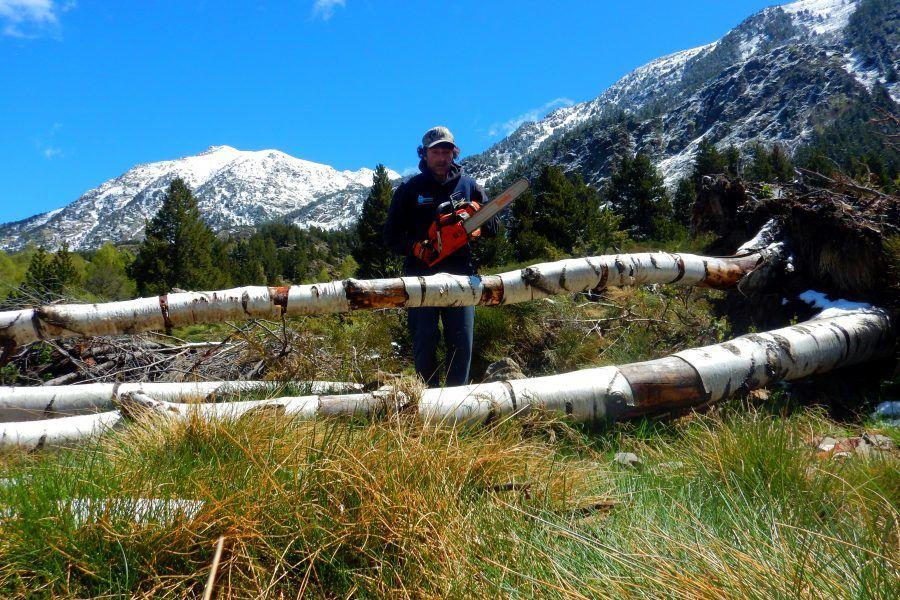 Guies Profesionals AEGM, Els barrancs dels Pirineus
